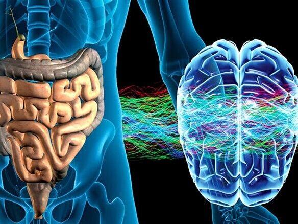 Кишкові бактерії можуть викликати аутизм: невтішна інформація від науковців