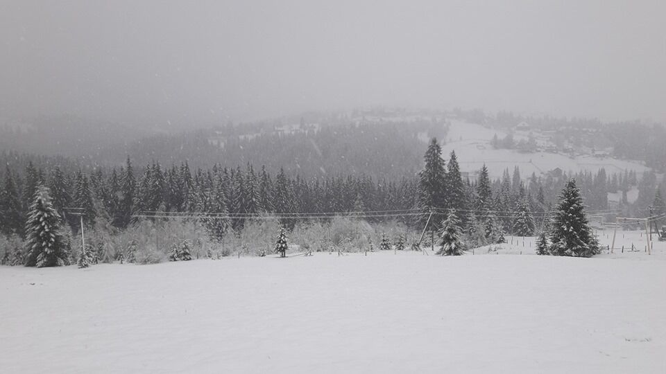 """""""Готуємо лижі!"""" В Україні раптово випав сніг"""