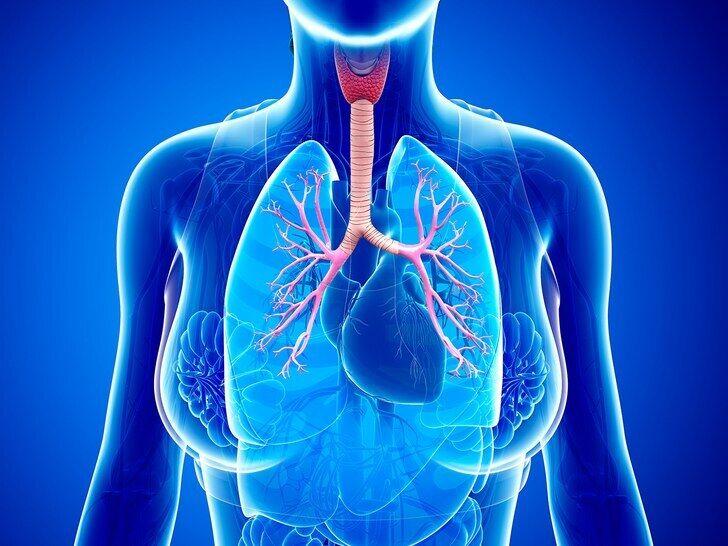 профилактика астмы
