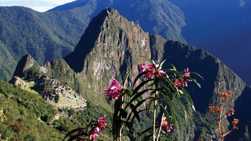 12 невероятных фактов о руинах Мачу-Пикчу