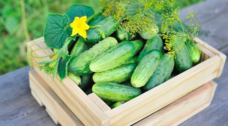 Названі найкорисніші фрукти і овочі липня