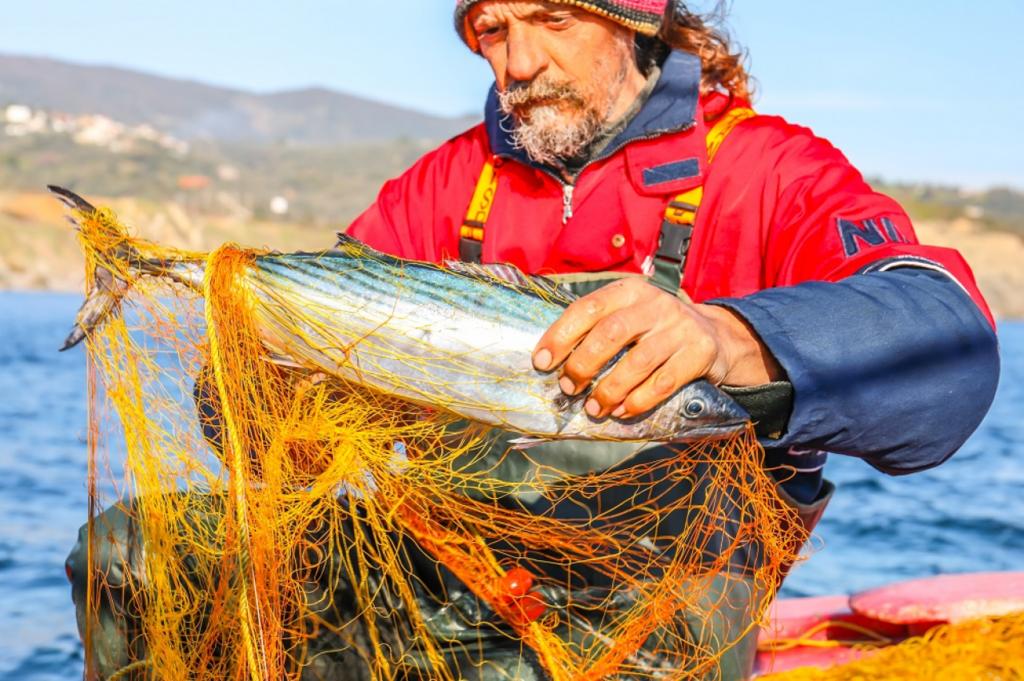 Рибне господарство України налічує понад 25 000 співробітників