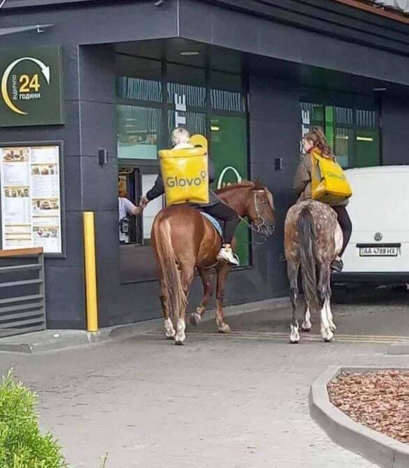 Лошади возле McDonalds
