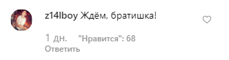 Ліндеманн керував літаком на шляху до Москви