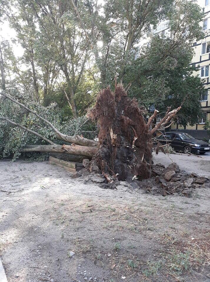 Сносило крыши, падали деревья: в Днепре прошел мощный ураган
