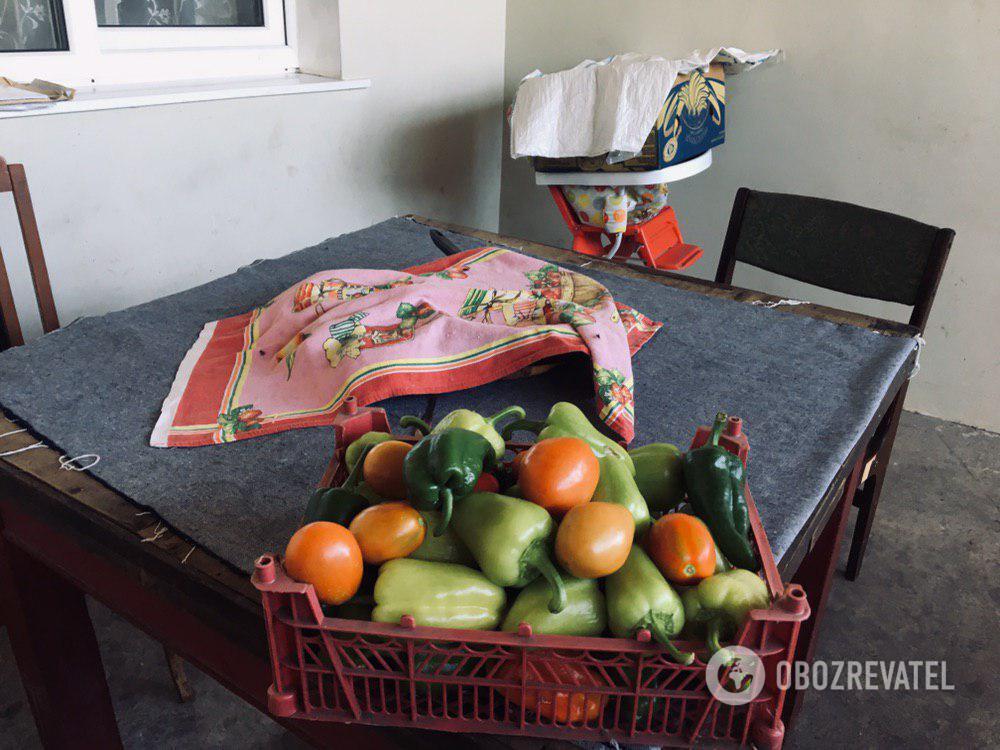 Помощь от соседей - домашние овощи