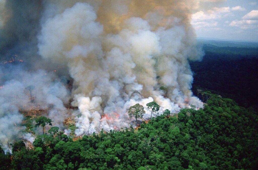 Лесные пожары в тропиках Бразилии