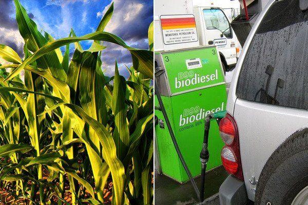 Биотопливо в мире применяется все активнее