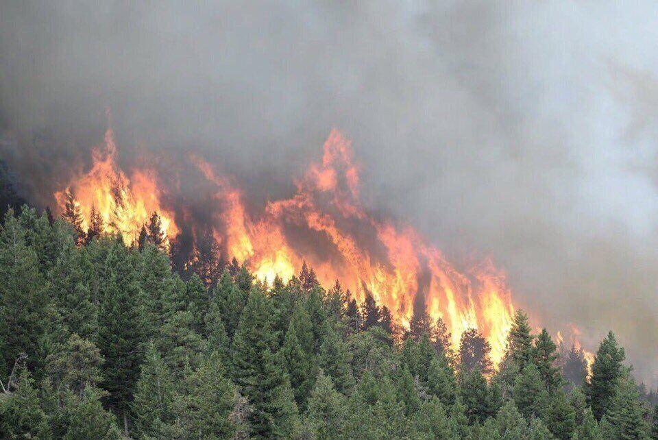 Україні пощастило: названо наслідки пекельних пожеж у Сибіру