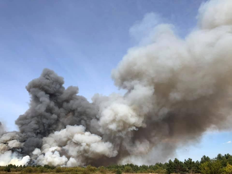Дніпропетровщина у вогні: в мережі з'явилися моторошні фото масштабної лісової пожежі