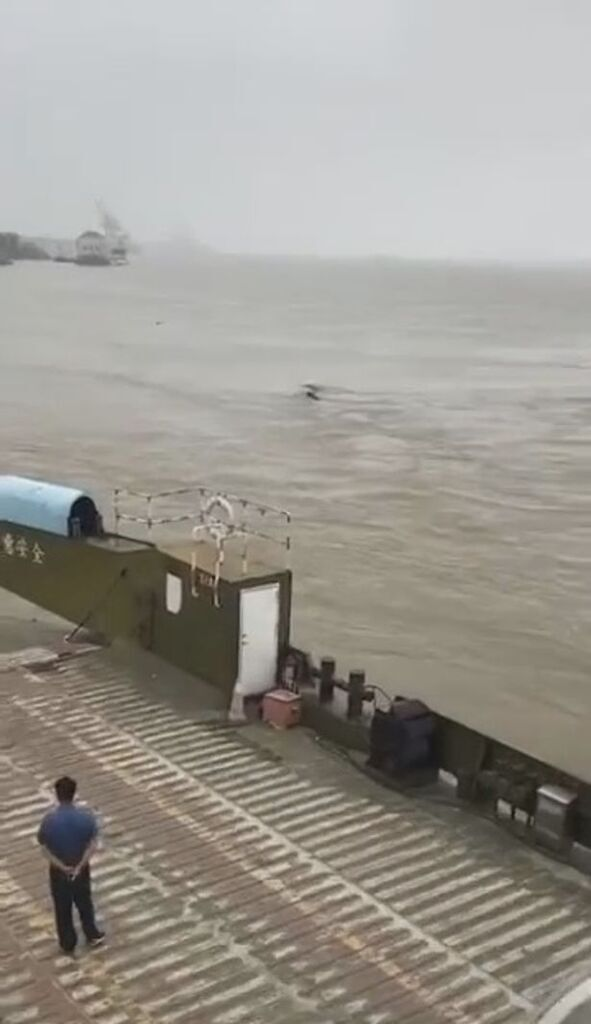 Водяной монстр в Китае