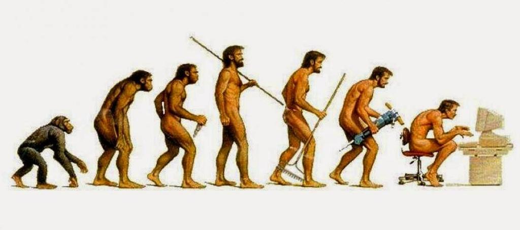 Эволюция человечества по теории Дарвина