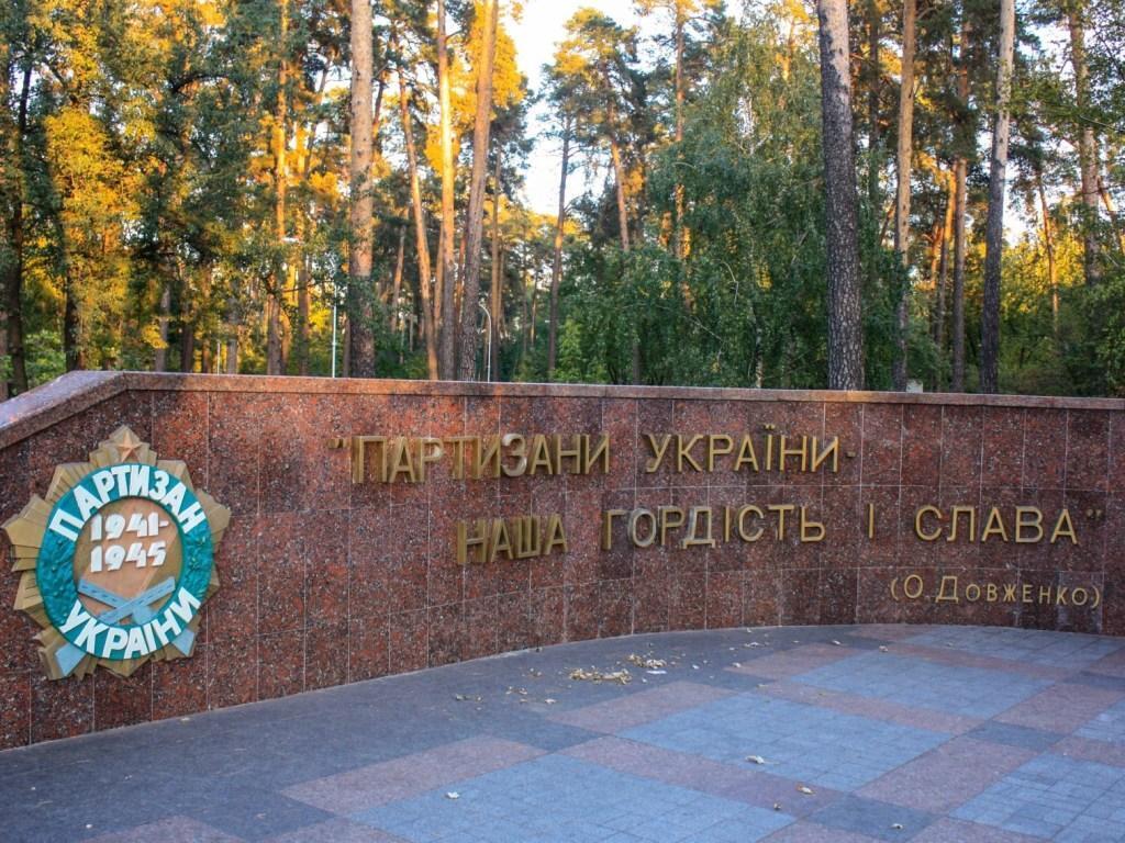 День партизанської слави України