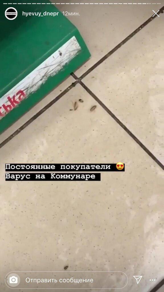 Тараканы в супермаркете