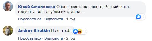 """""""Голубь-шпион"""": Захарова рассмешила поездкой в США"""
