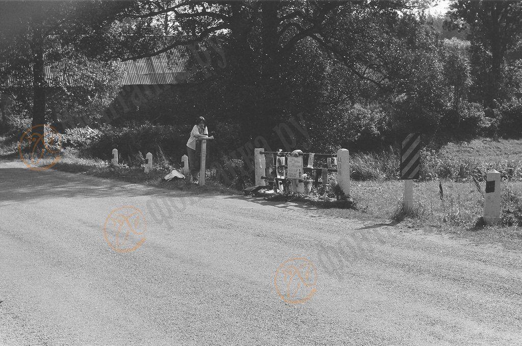 Столбики на месте ДТП, где погиб Цой