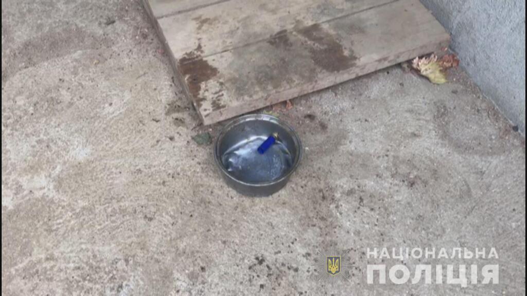 На Одесщине 12-летний подросток застрелил товарища