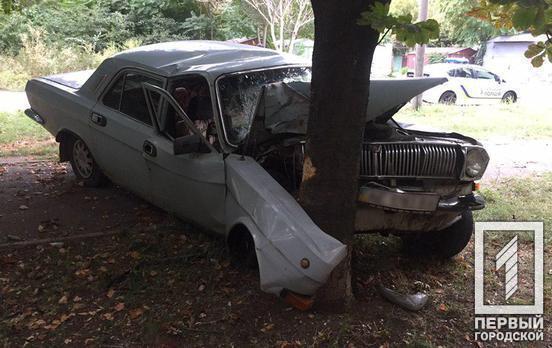 Під Дніпром п'яний водій врізався в дерево