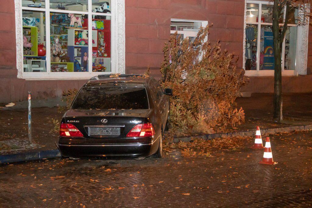 У Дніпрі Lexus зніс дерево