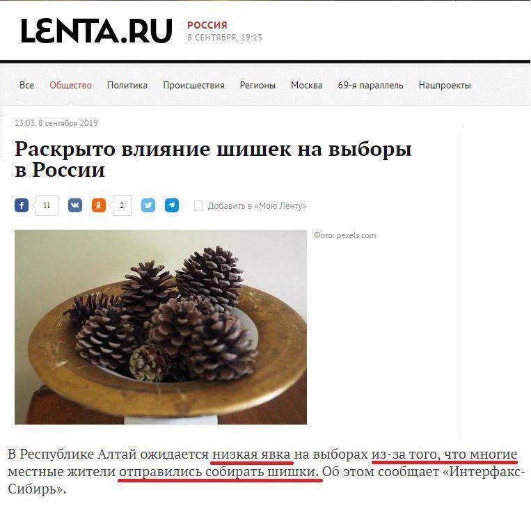 Краще шишки збирати: в РФ зганьбилися з виборами