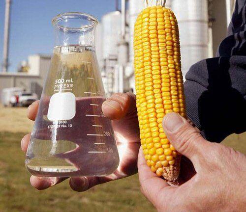 Как выглядит биоэтанол