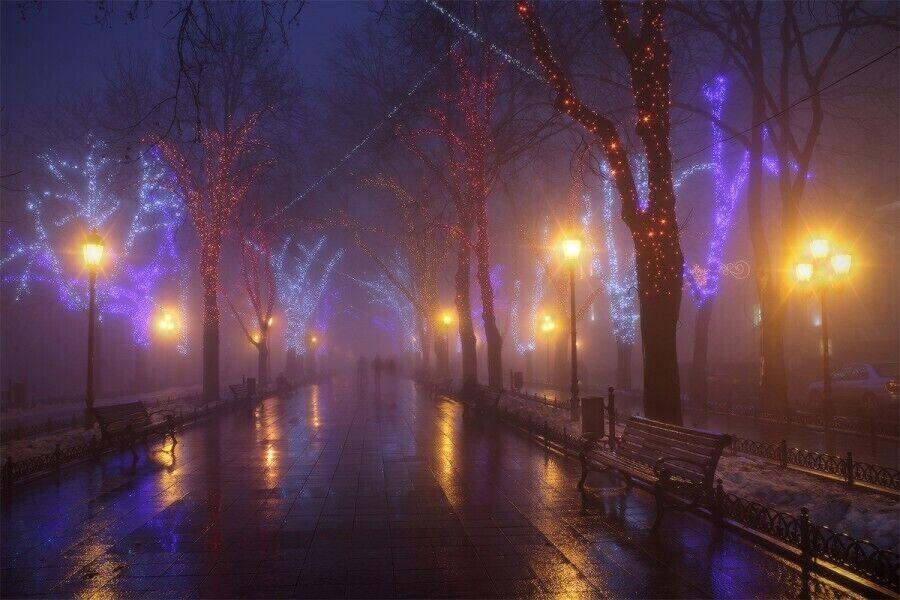 Синоптики дали теплый прогноз на 15 января в Одессе