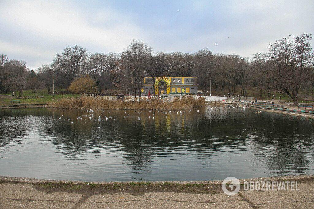 Зима не спешит в Одессу: фоторепортаж из старейшего городского парка