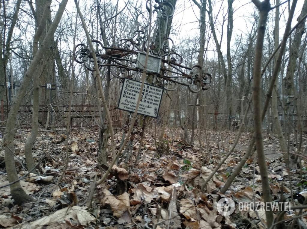 Могили на Солом'янському кладовищі заросли деревами