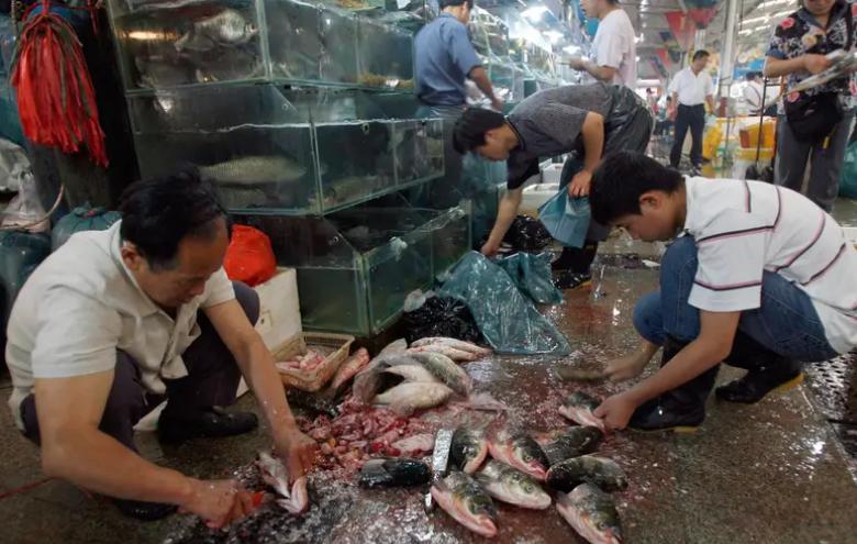 Коронавірус: у Китаї показали ринок, який став джерелом