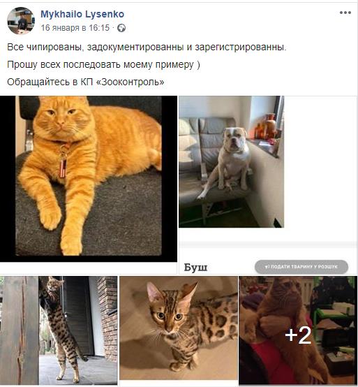 Заместитель мэра Днепра Лысенко о регистрации своих питомцев