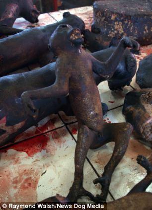 В Індонезії їдять смажених щурів і собак