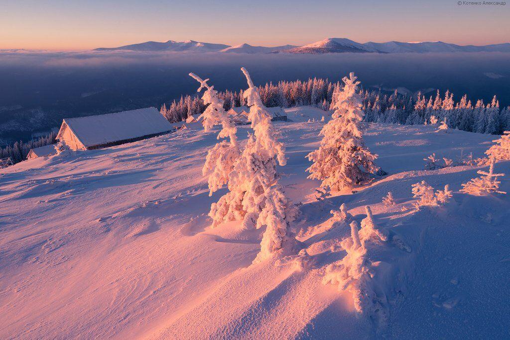 Сказочная зима в Карпатах, 2015 год (фотограф Александр Котенко)