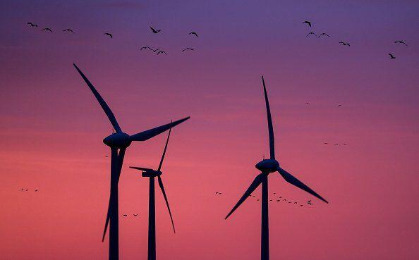 Мифы о зеленой энергетике