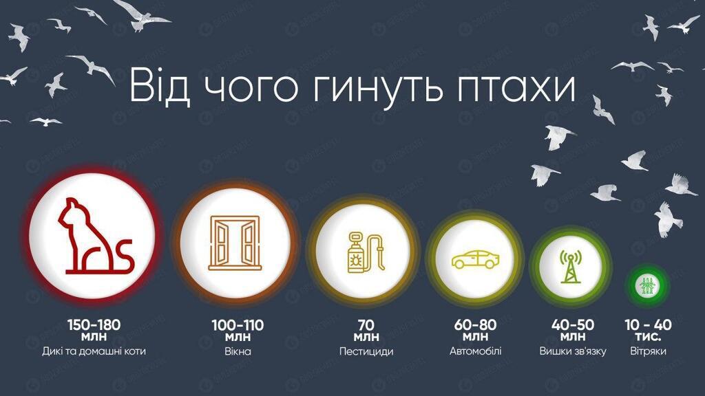 """Разрушаем топ-10 мифов о """"зеленой"""" энергетике"""