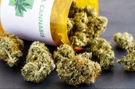 В Одесі закрили 20-річну справу про тонни марихуани