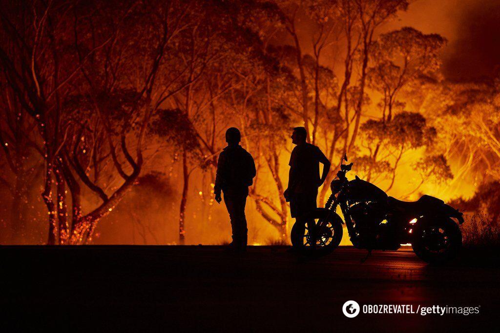 Адские пожары в Австралии
