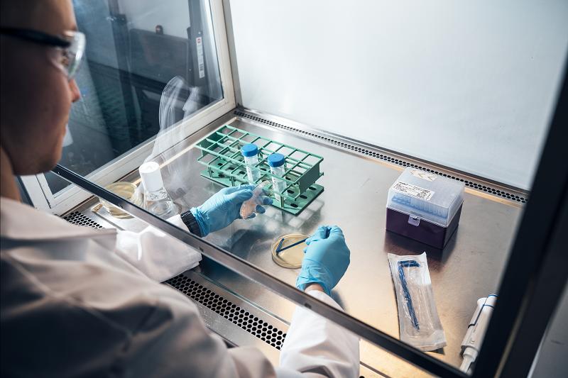 Процес створення протеїну Solar Food