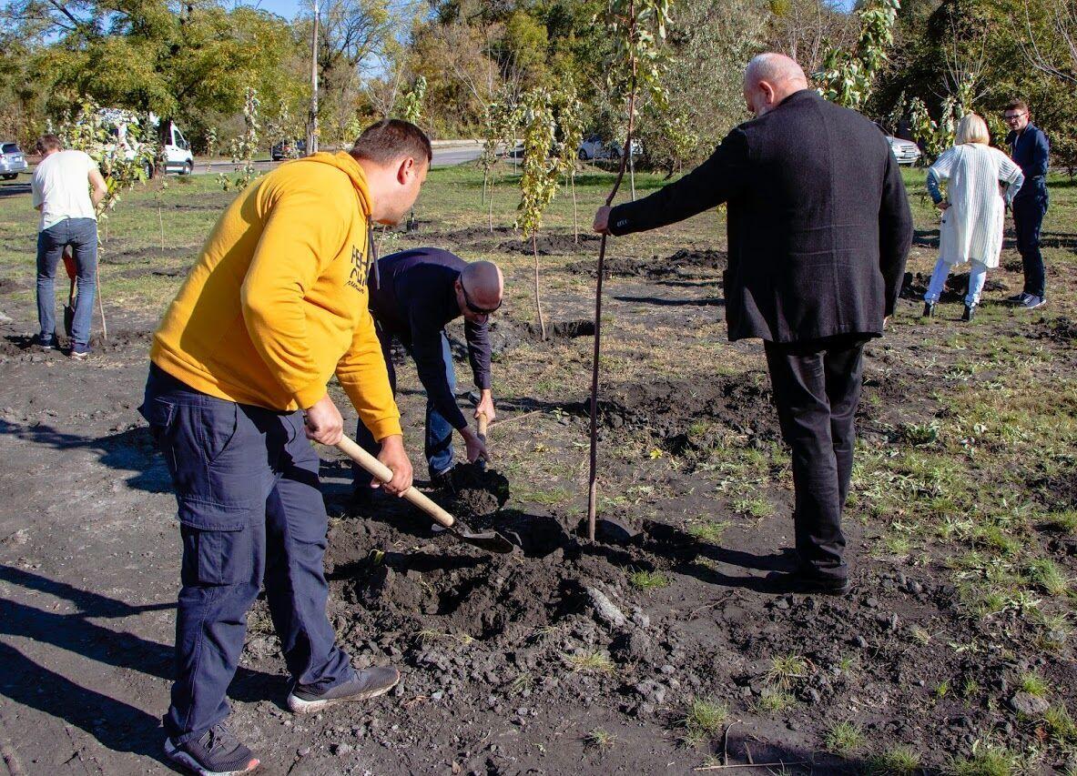 В Днепре работники ДТЭК и горсовета высадили деревья