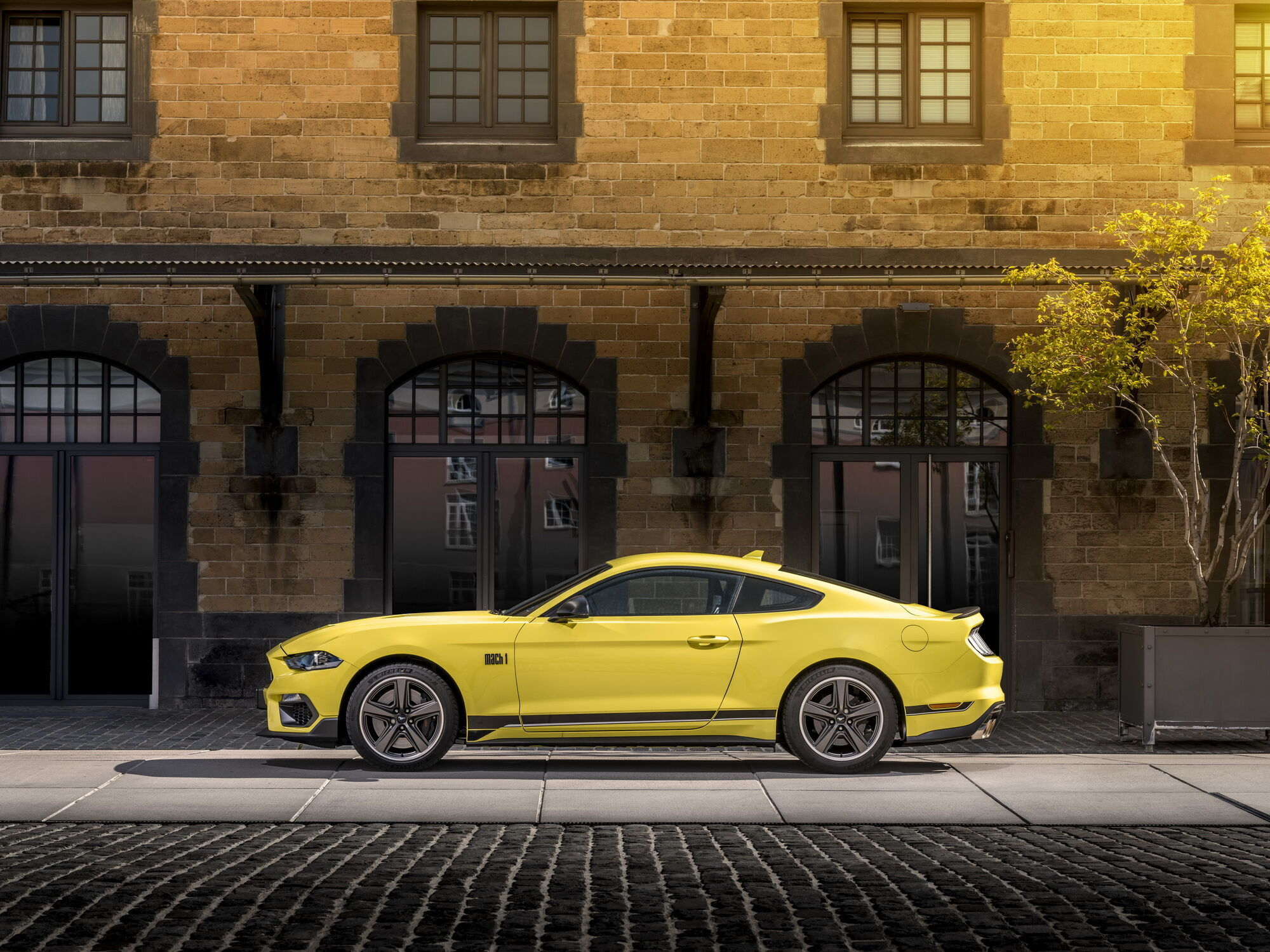 2 021 Ford Mustang Mach 1