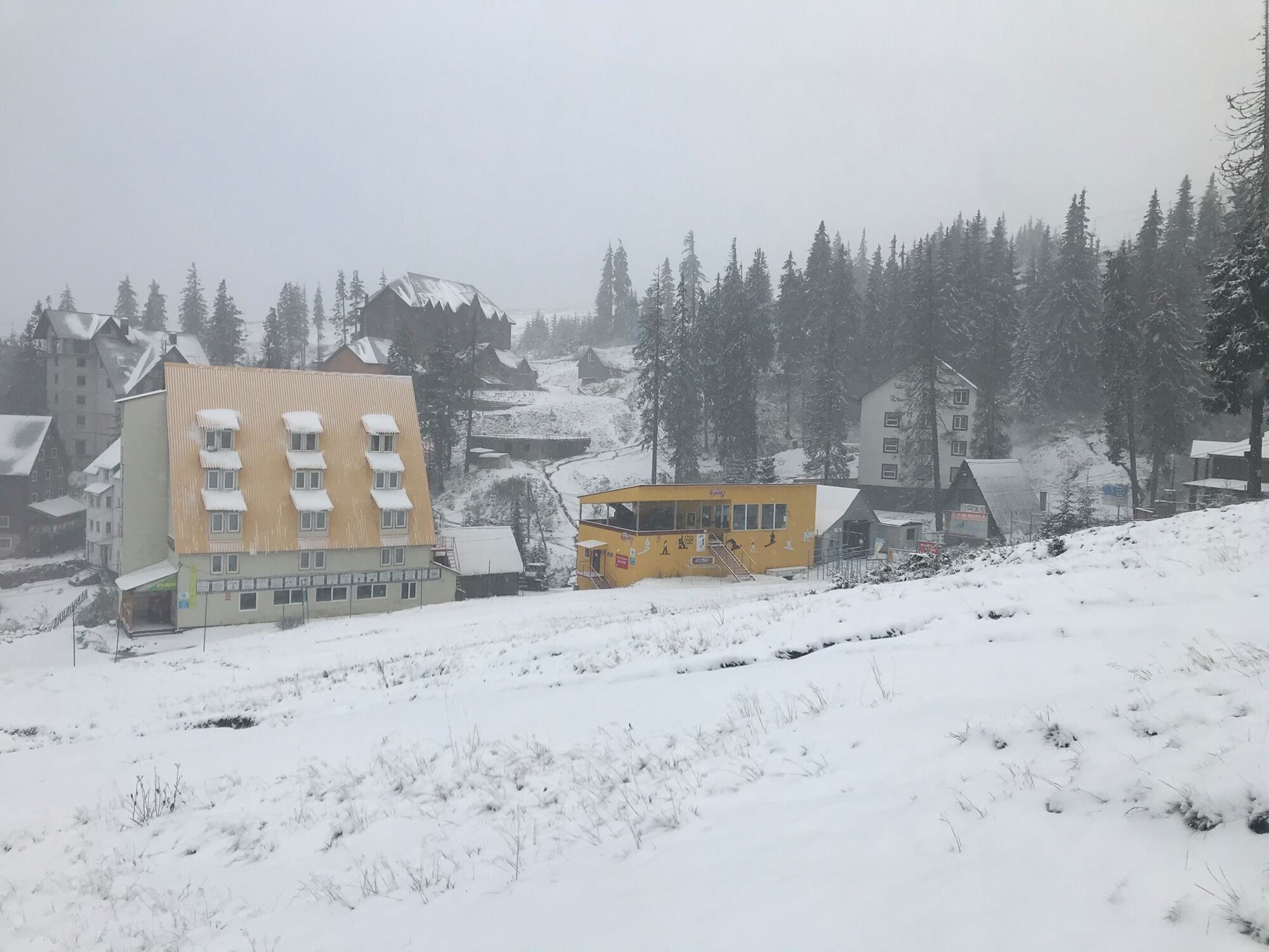 Драгобрат засыпало свежим снегом