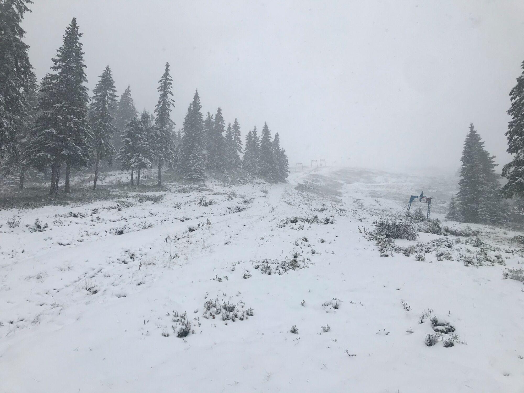 Снег почти полностью покрыл землю на Драгобрате