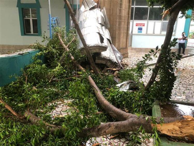 Ураган у Туреччині повалив безліч дерев.