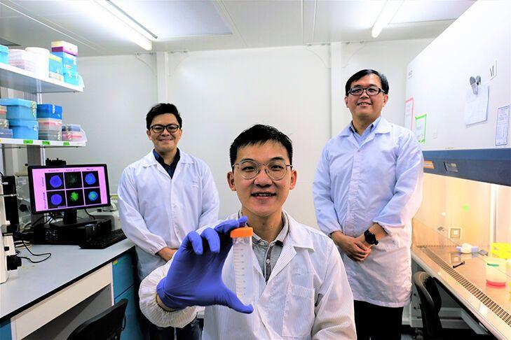Новый метод позволяет проникать внутрь раковых клеток и разрушать их
