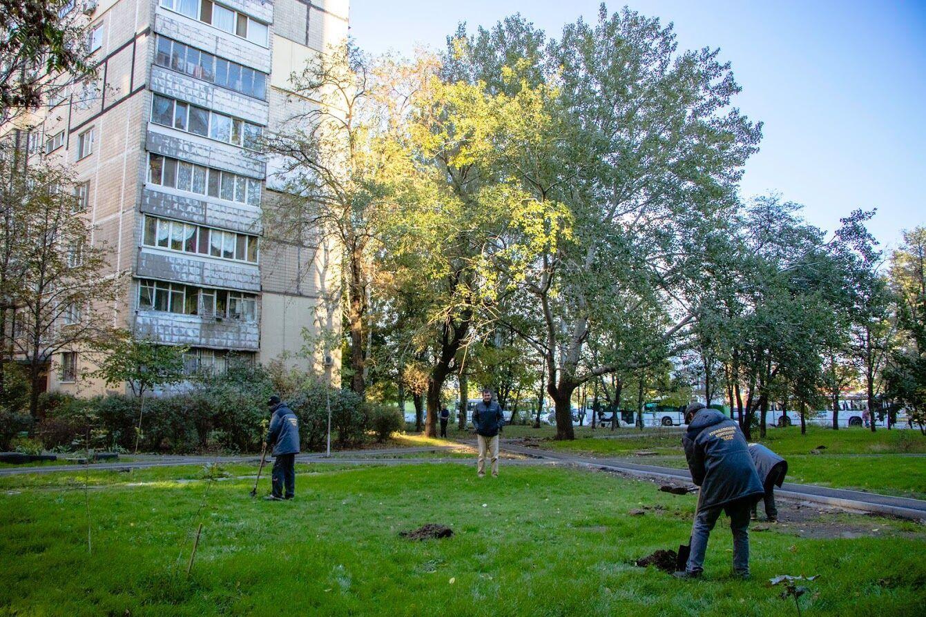 Среди днепрян немало желающих приобщиться к озеленению города.