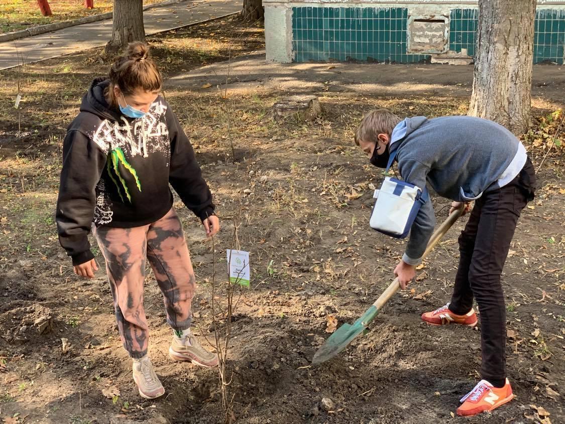 В рамках программы #Дніпро_квітучий высадили уже 260 деревьев