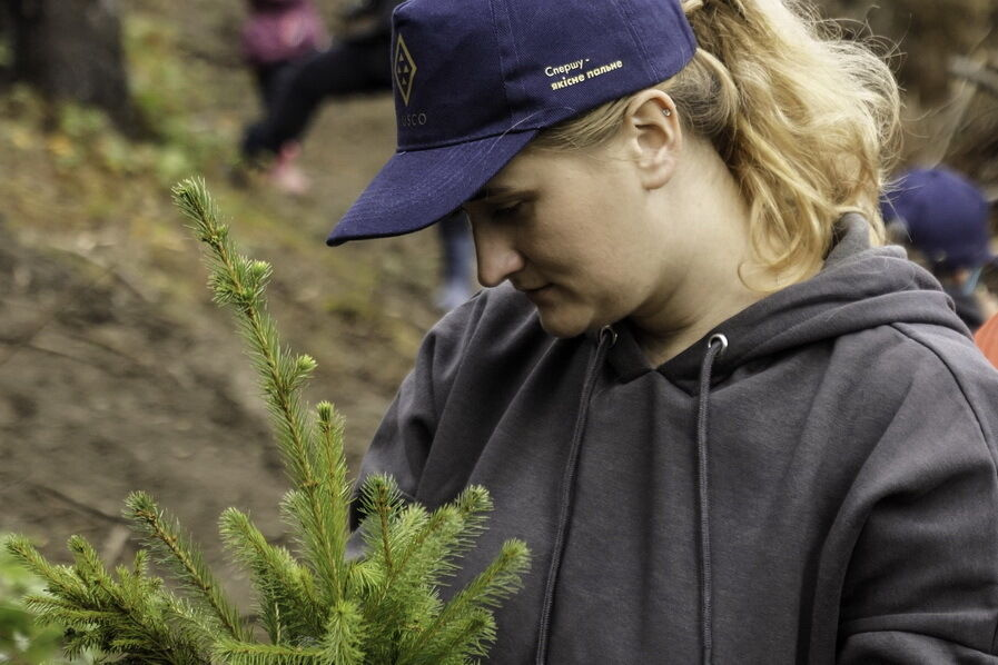 Glusco возрождает леса в Карпатах