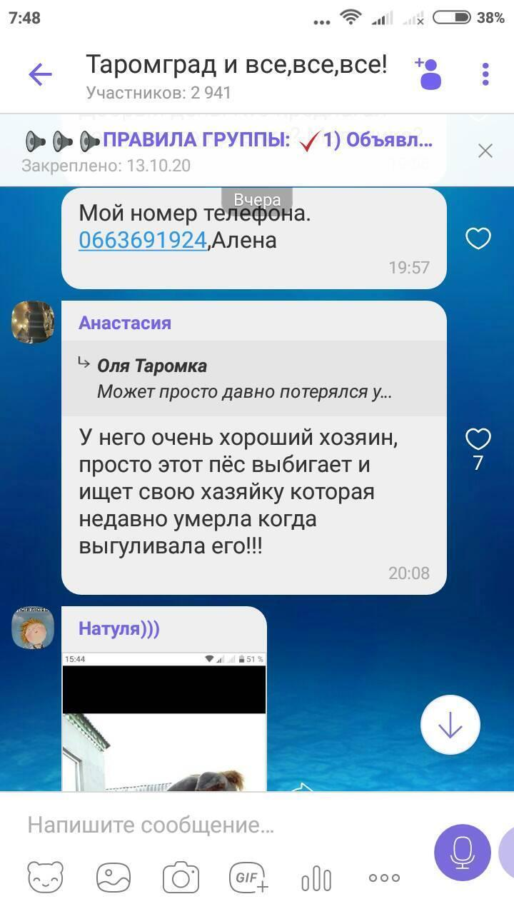 Скріншот.