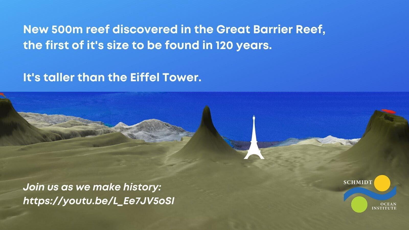 Найденный риф выше Эйфелевой башни в Париже