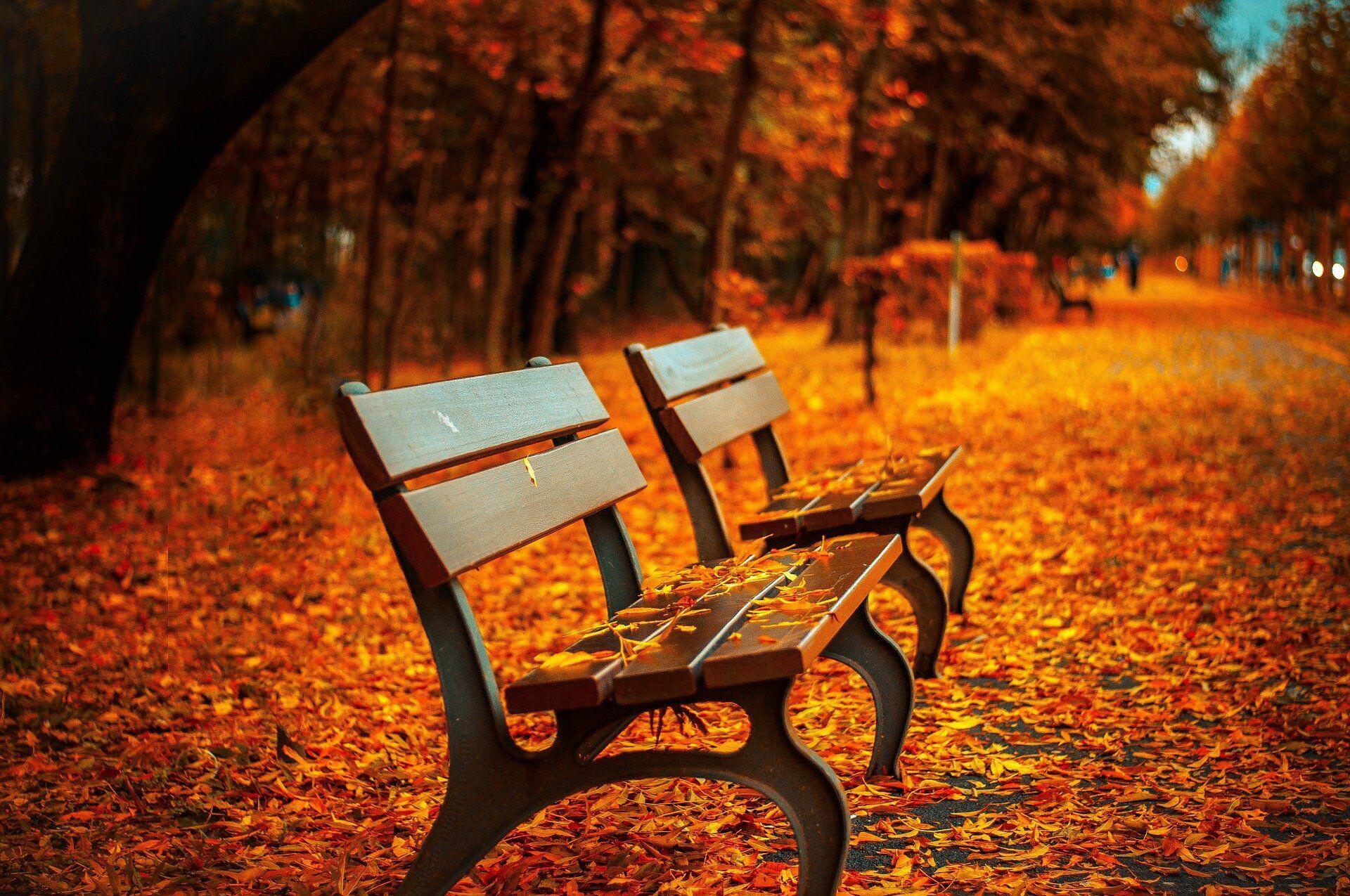 Приметы на 30 октября: какой будет погода