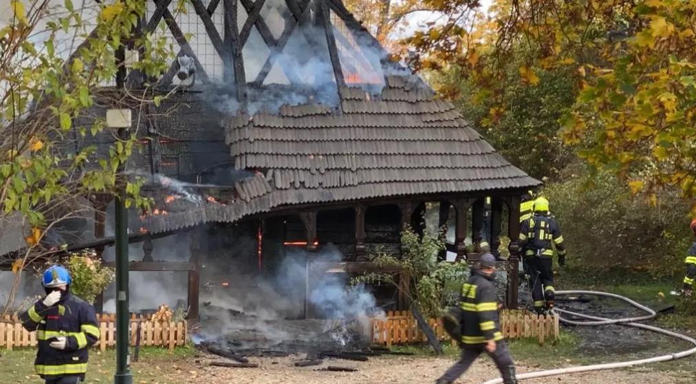 Чтобы потушить пожар в пражском парке, понадобилось 6 экипажей спасателей.